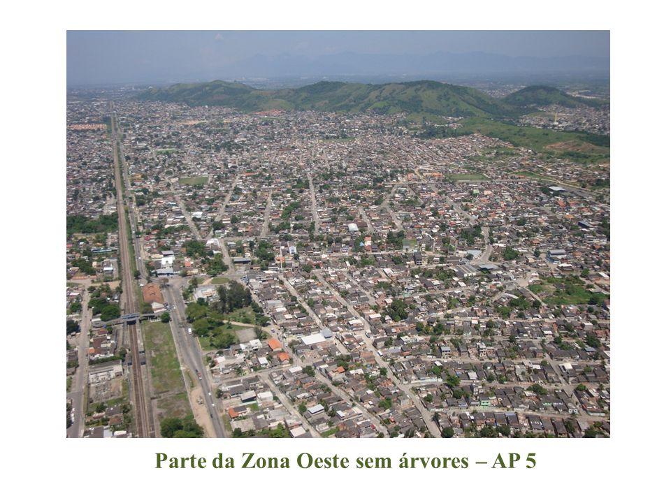 Parte da Zona Oeste sem árvores – AP 5