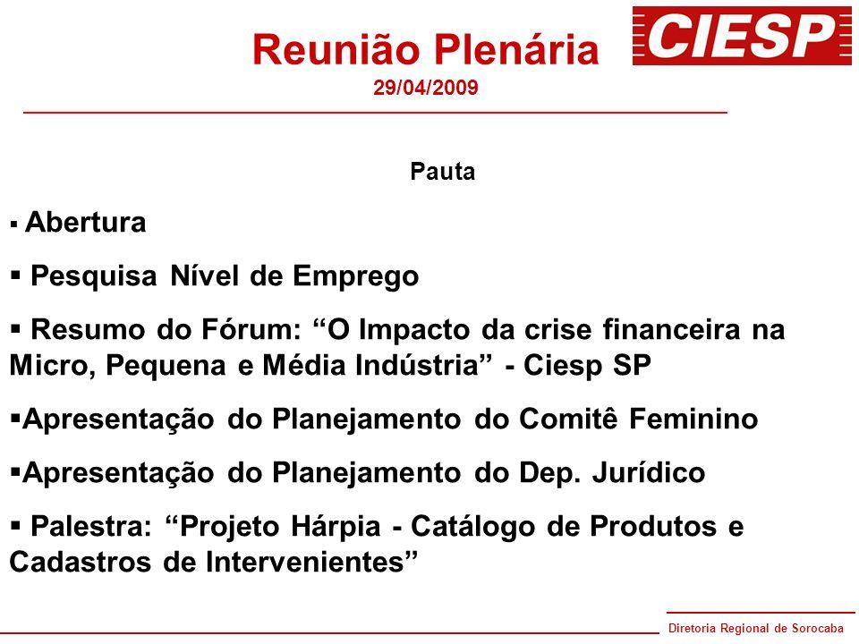 Reunião Plenária Pesquisa Nível de Emprego