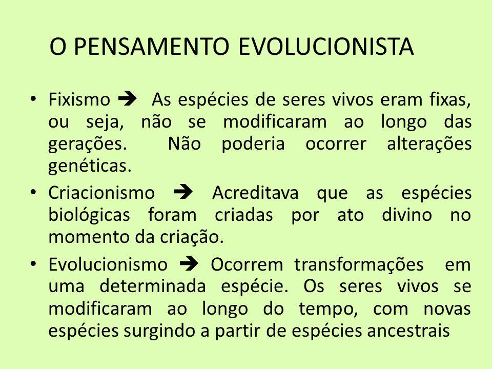 O PENSAMENTO EVOLUCIONISTA