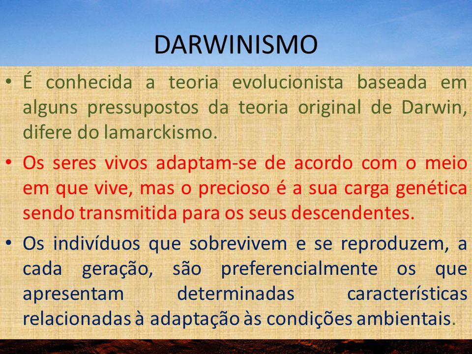 DARWINISMO É conhecida a teoria evolucionista baseada em alguns pressupostos da teoria original de Darwin, difere do lamarckismo.
