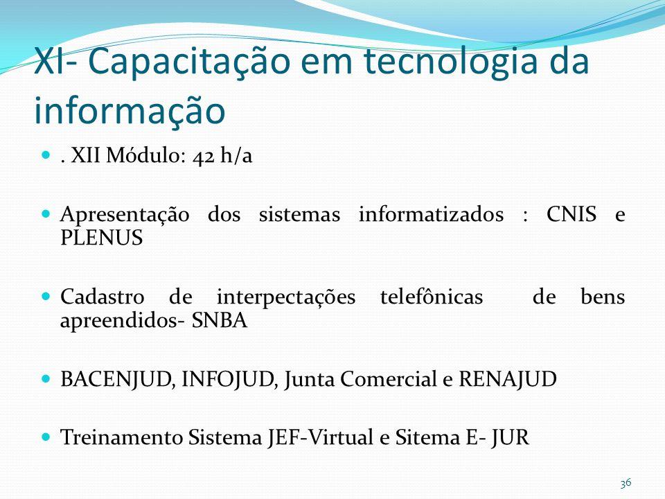 XI- Capacitação em tecnologia da informação