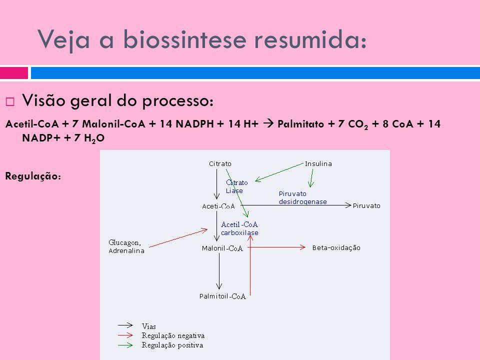 Veja a biossintese resumida: