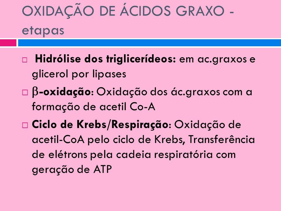 OXIDAÇÃO DE ÁCIDOS GRAXO - etapas