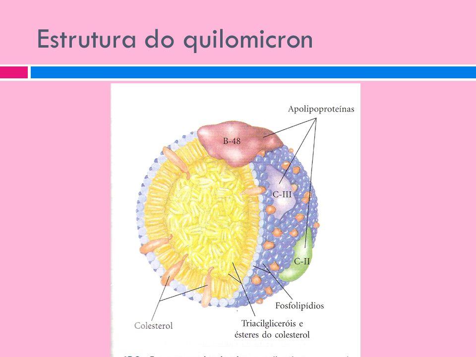 Estrutura do quilomicron