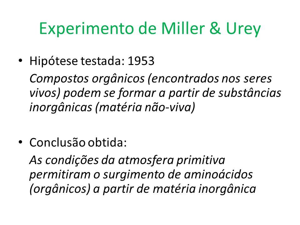 Experimento de Miller & Urey
