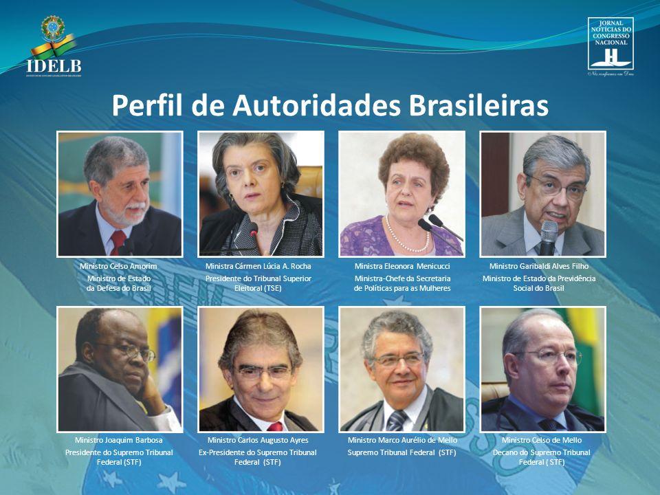 Ministro Celso Amorim Ministro de Estado da Defesa do Brasil