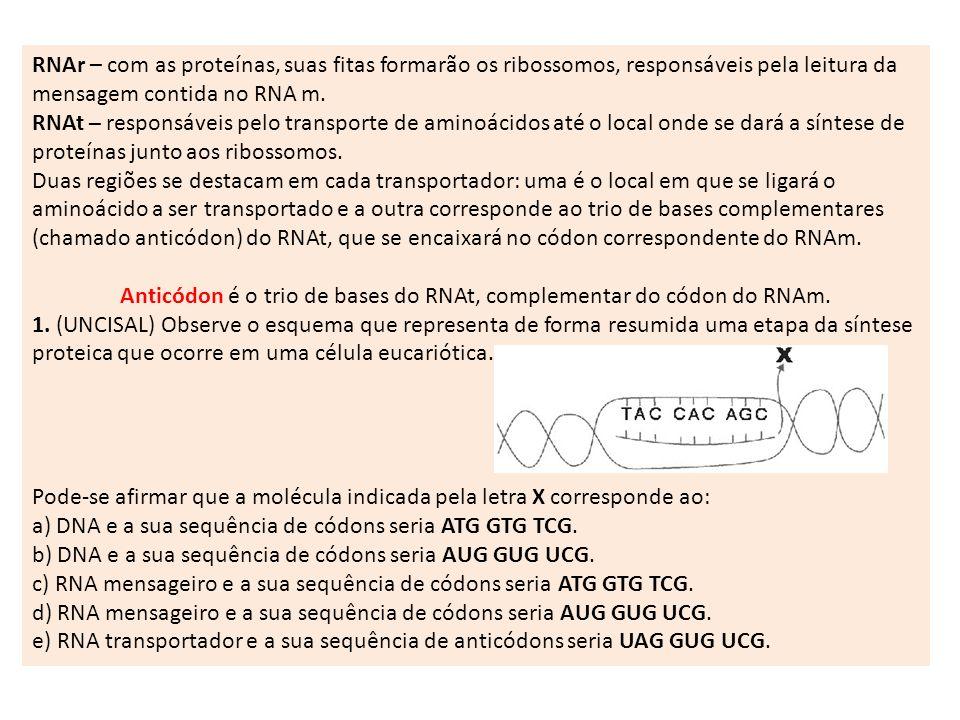 Anticódon é o trio de bases do RNAt, complementar do códon do RNAm.