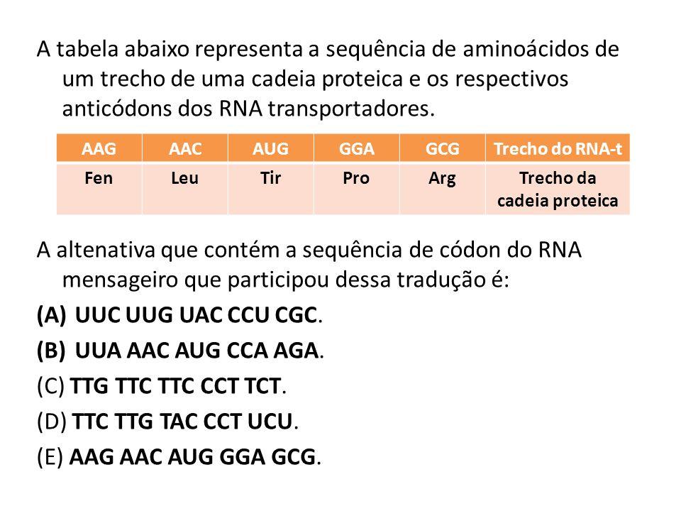 Trecho da cadeia proteica