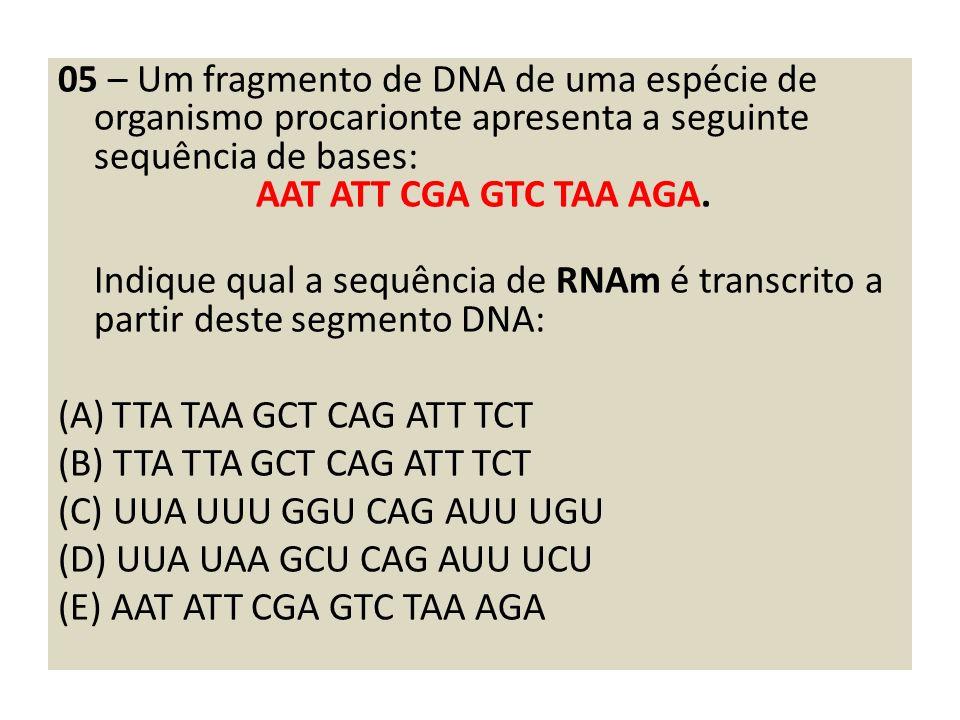 05 – Um fragmento de DNA de uma espécie de organismo procarionte apresenta a seguinte sequência de bases: AAT ATT CGA GTC TAA AGA.