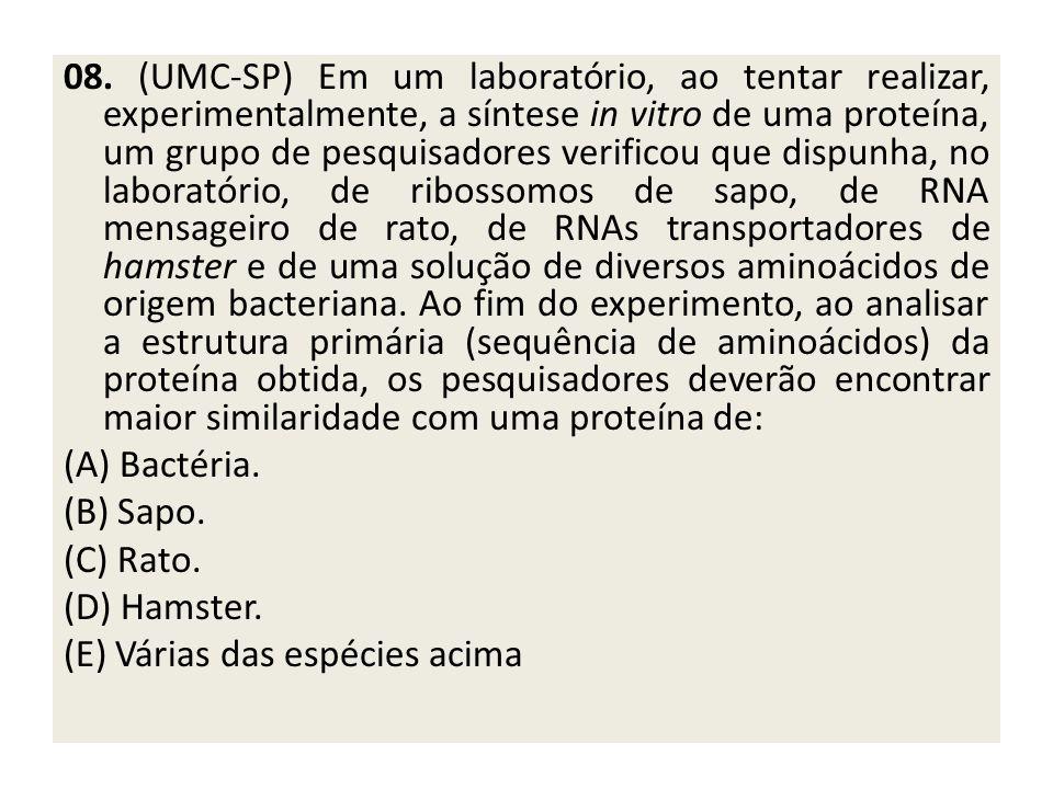 08. (UMC-SP) Em um laboratório, ao tentar realizar, experimentalmente, a síntese in vitro de uma proteína, um grupo de pesquisadores verificou que dispunha, no laboratório, de ribossomos de sapo, de RNA mensageiro de rato, de RNAs transportadores de hamster e de uma solução de diversos aminoácidos de origem bacteriana. Ao fim do experimento, ao analisar a estrutura primária (sequência de aminoácidos) da proteína obtida, os pesquisadores deverão encontrar maior similaridade com uma proteína de: