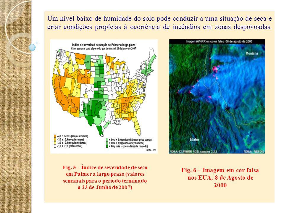 Fig. 6 – Imagem em cor falsa nos EUA, 8 de Agosto de 2000
