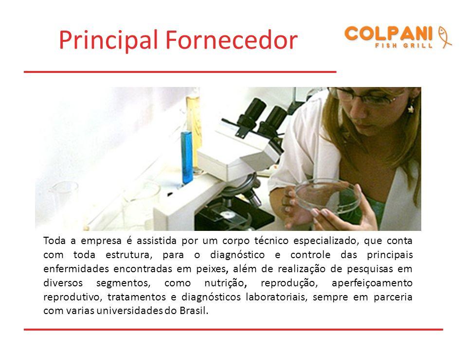 Principal Fornecedor