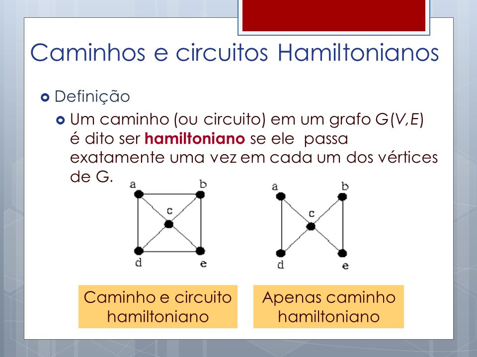 Caminhos e circuitos Hamiltonianos
