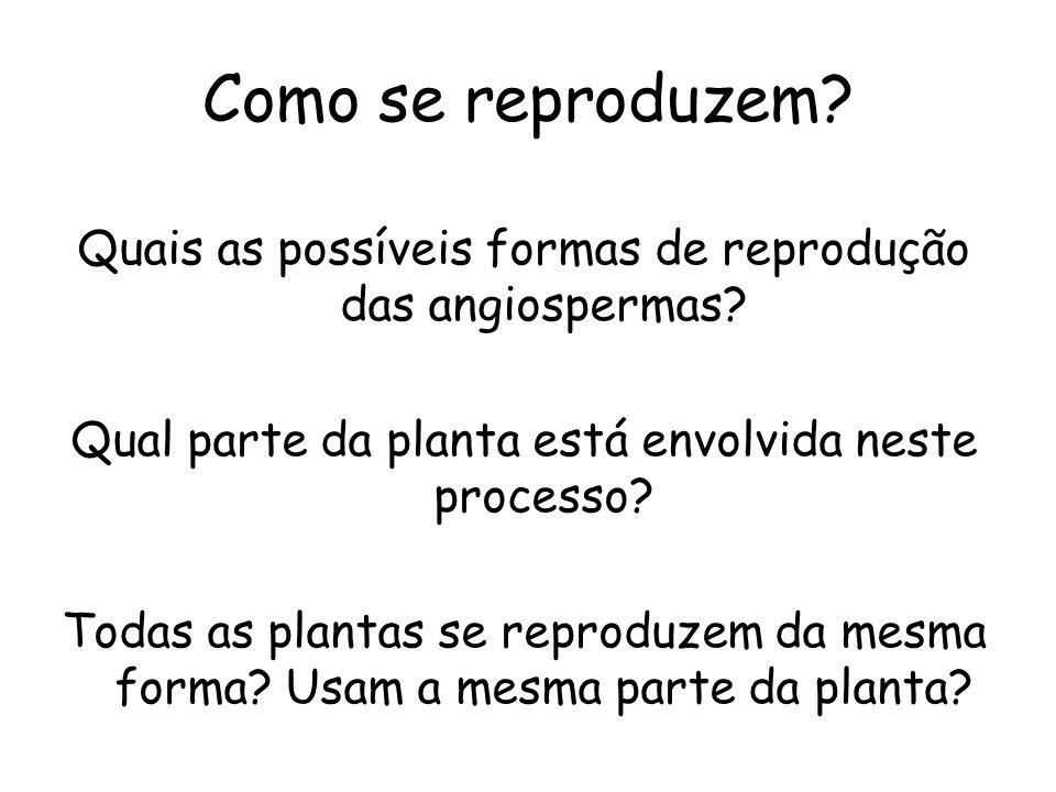 Como se reproduzem