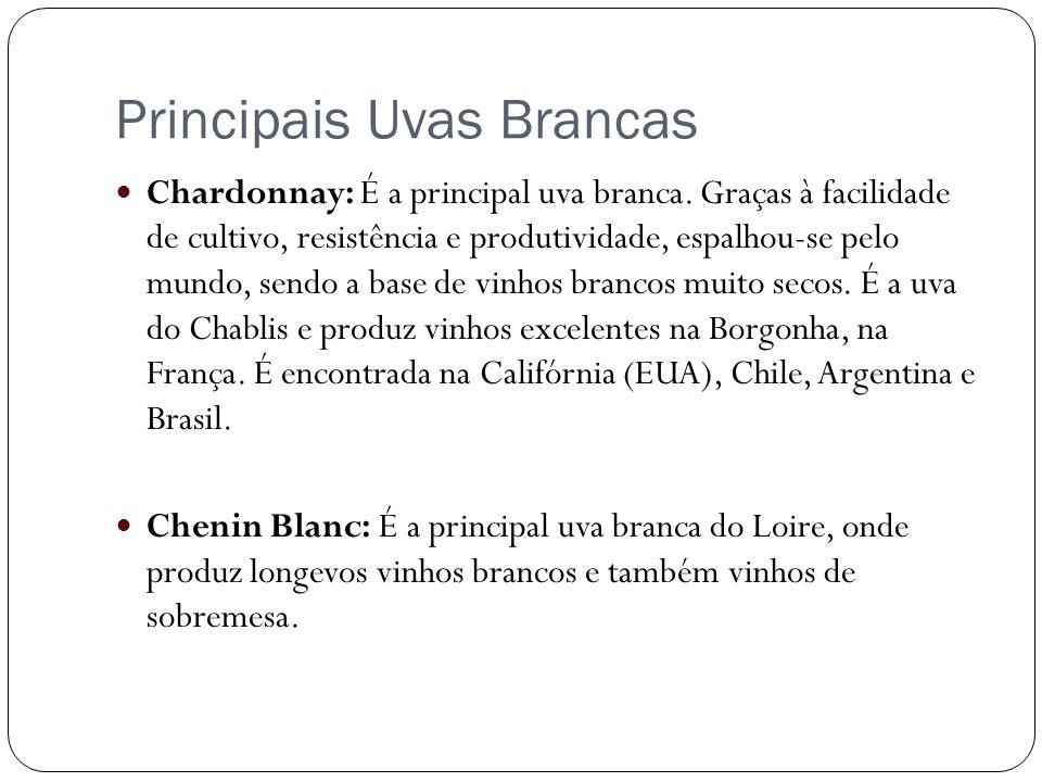 Principais Uvas Brancas