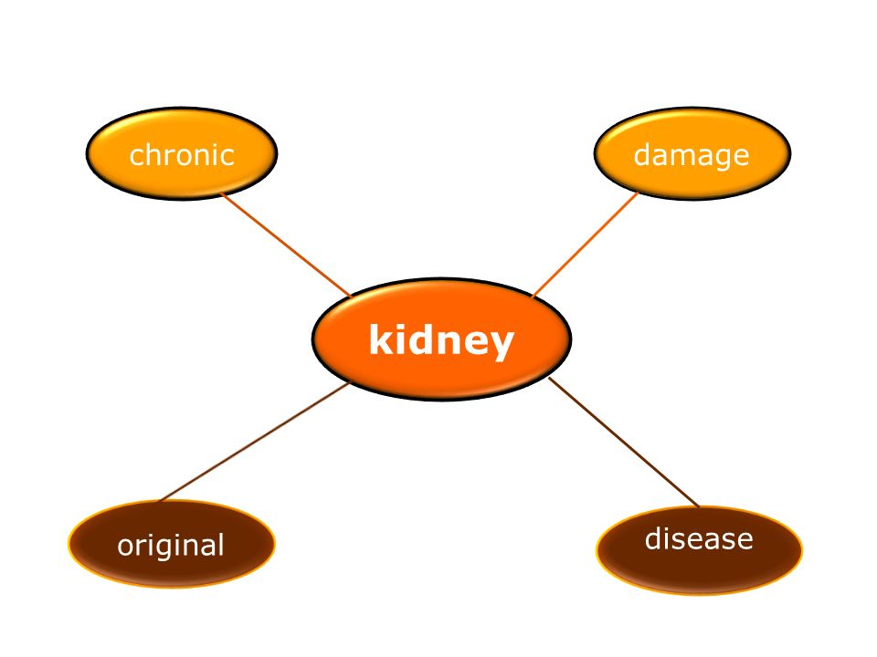 chronic damage kidney original disease
