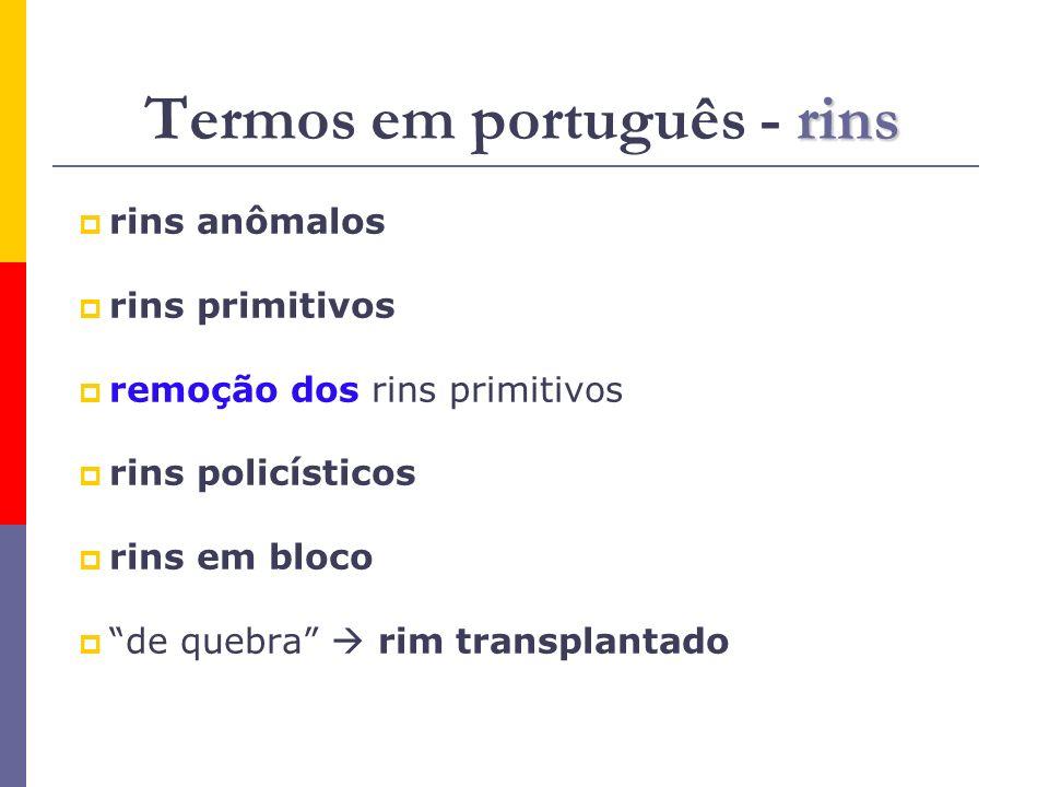 Termos em português - rins