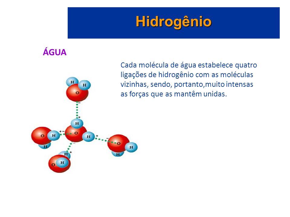 Hidrogênio ÁGUA Cada molécula de água estabelece quatro