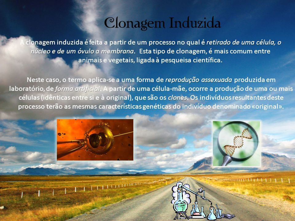A clonagem induzida é feita a partir de um processo no qual é retirado de uma célula, o núcleo e de um óvulo a membrana. Esta tipo de clonagem, é mais comum entre animais e vegetais, ligada à pesqueisa científica.
