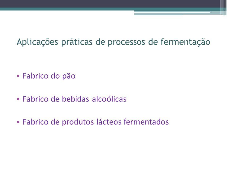 Aplicações práticas de processos de fermentação
