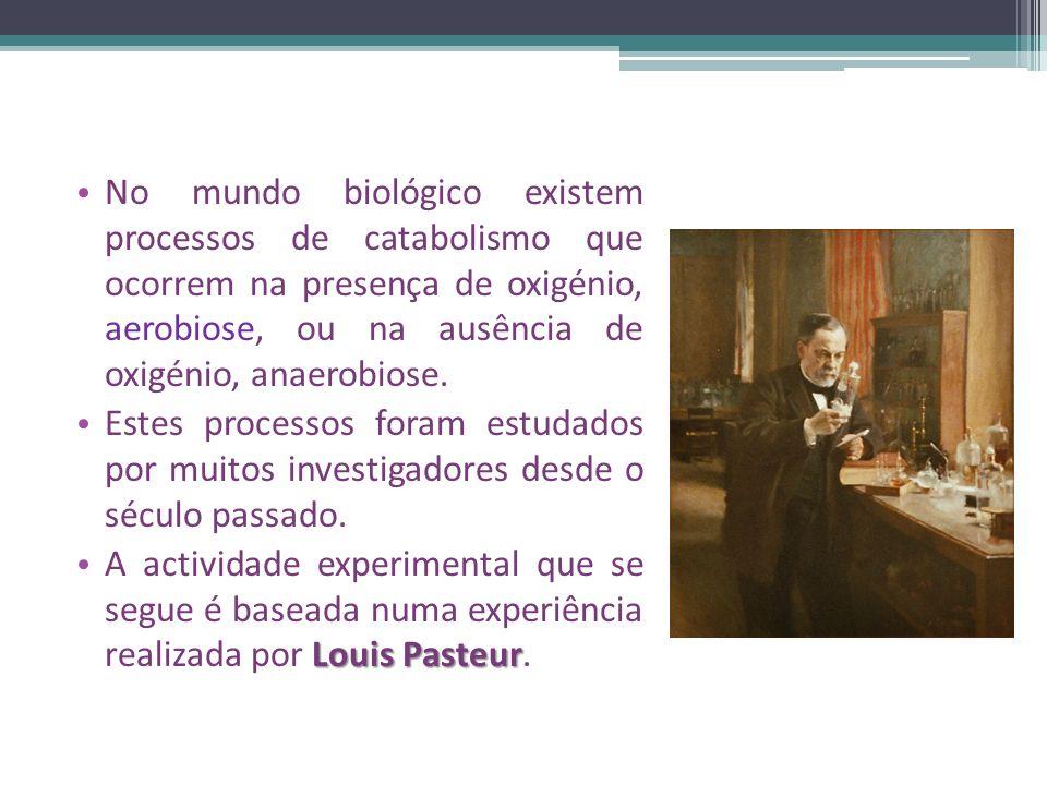 No mundo biológico existem processos de catabolismo que ocorrem na presença de oxigénio, aerobiose, ou na ausência de oxigénio, anaerobiose.