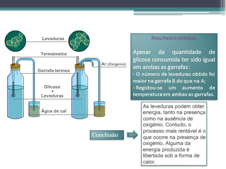 Resultados obtidos: Apesar da quantidade de glicose consumida ter sido igual em ambas as garrafas: