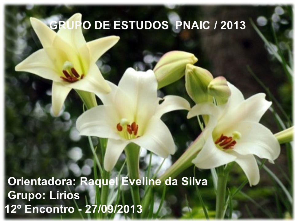 GRUPO DE ESTUDOS PNAIC / 2013
