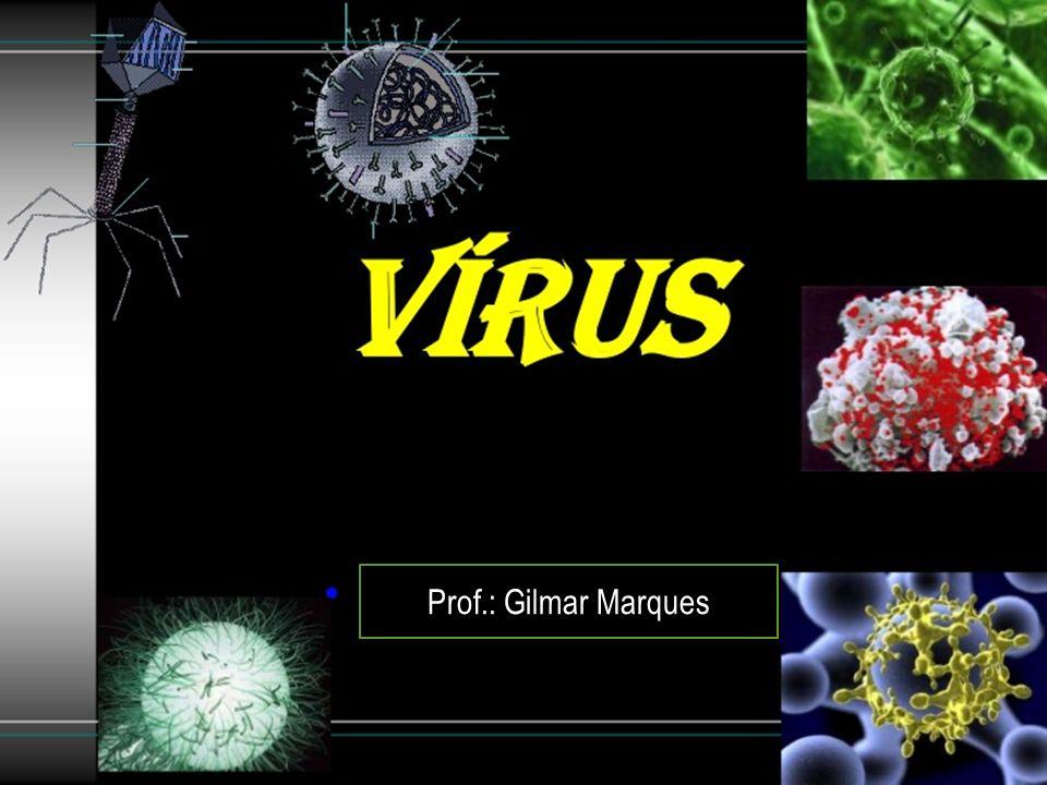 VÍRUS Prof.: Gilmar Marques