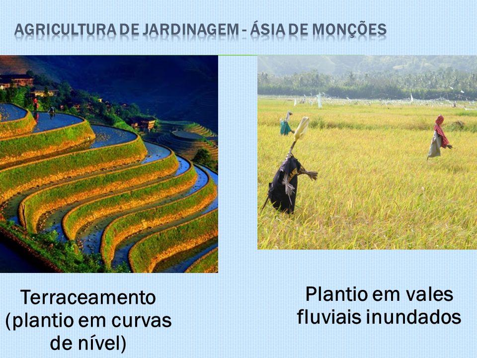 Agricultura de jardinagem - Ásia de Monções