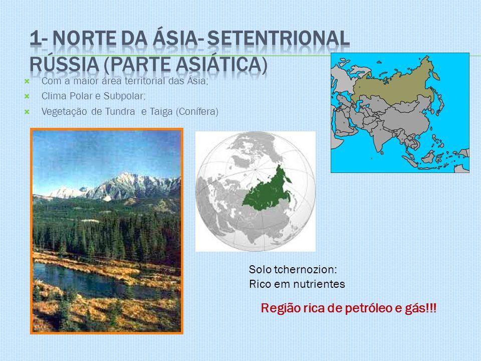 1- Norte da Ásia- Setentrional Rússia (parte asiática)