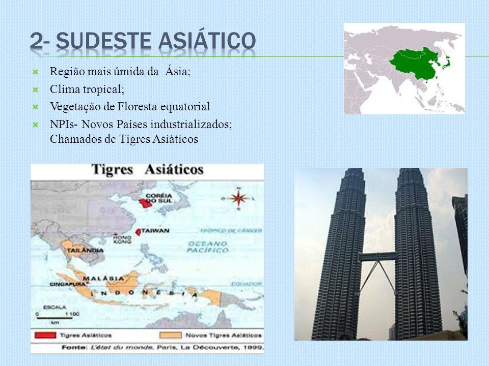 2- Sudeste Asiático Região mais úmida da Ásia; Clima tropical;