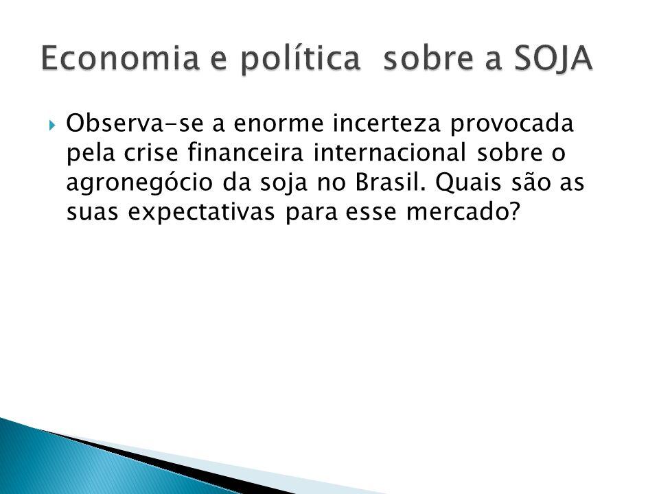 Economia e política sobre a SOJA