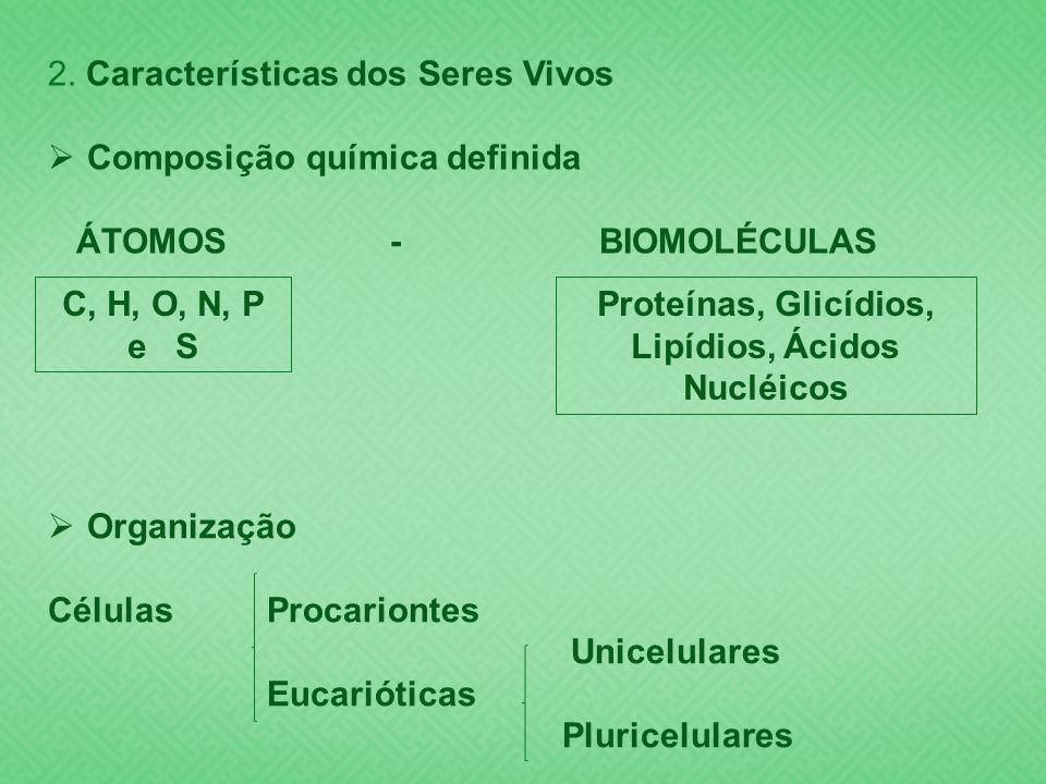 Proteínas, Glicídios, Lipídios, Ácidos Nucléicos