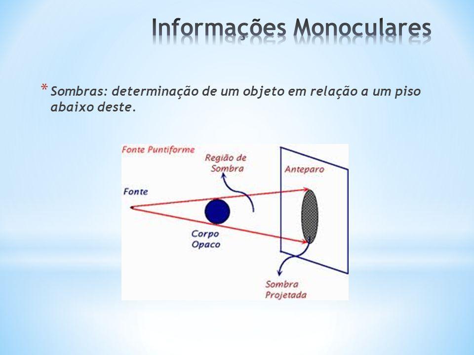 Informações Monoculares