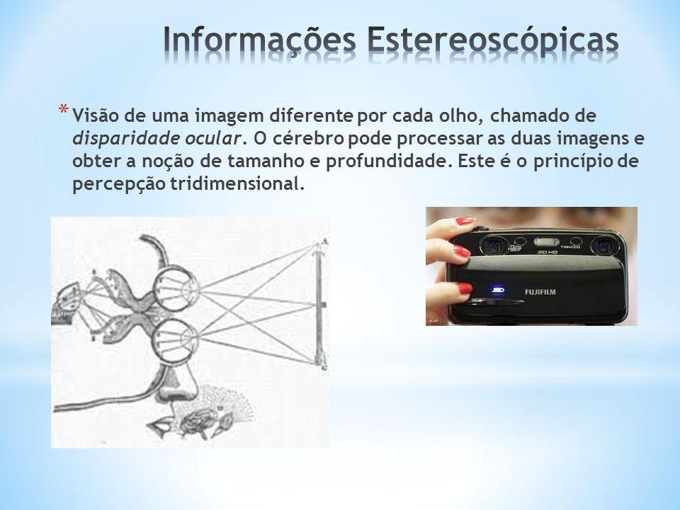 Informações Estereoscópicas