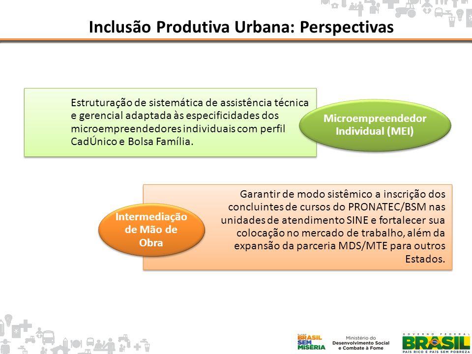 Inclusão Produtiva Urbana: Perspectivas