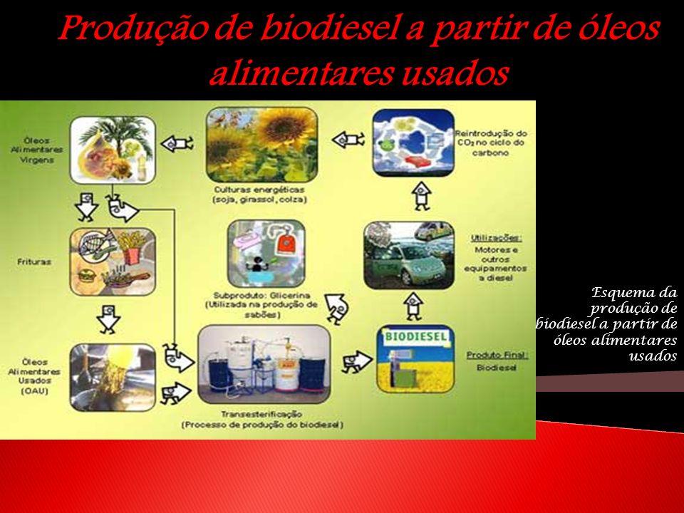 Produção de biodiesel a partir de óleos alimentares usados