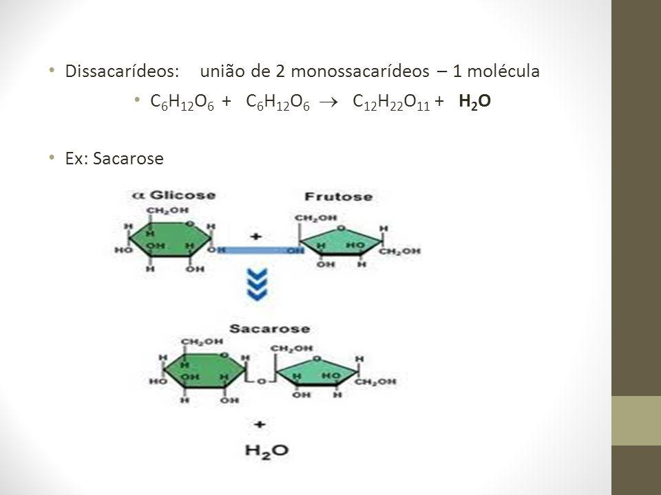 Dissacarídeos: união de 2 monossacarídeos – 1 molécula