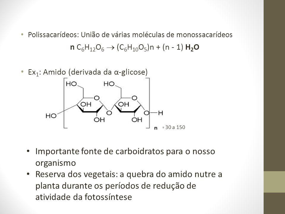 Importante fonte de carboidratos para o nosso organismo