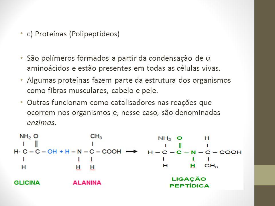 c) Proteínas (Polipeptídeos)