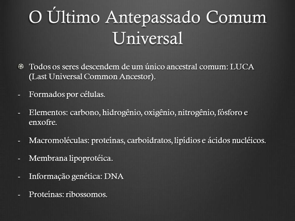 O Último Antepassado Comum Universal