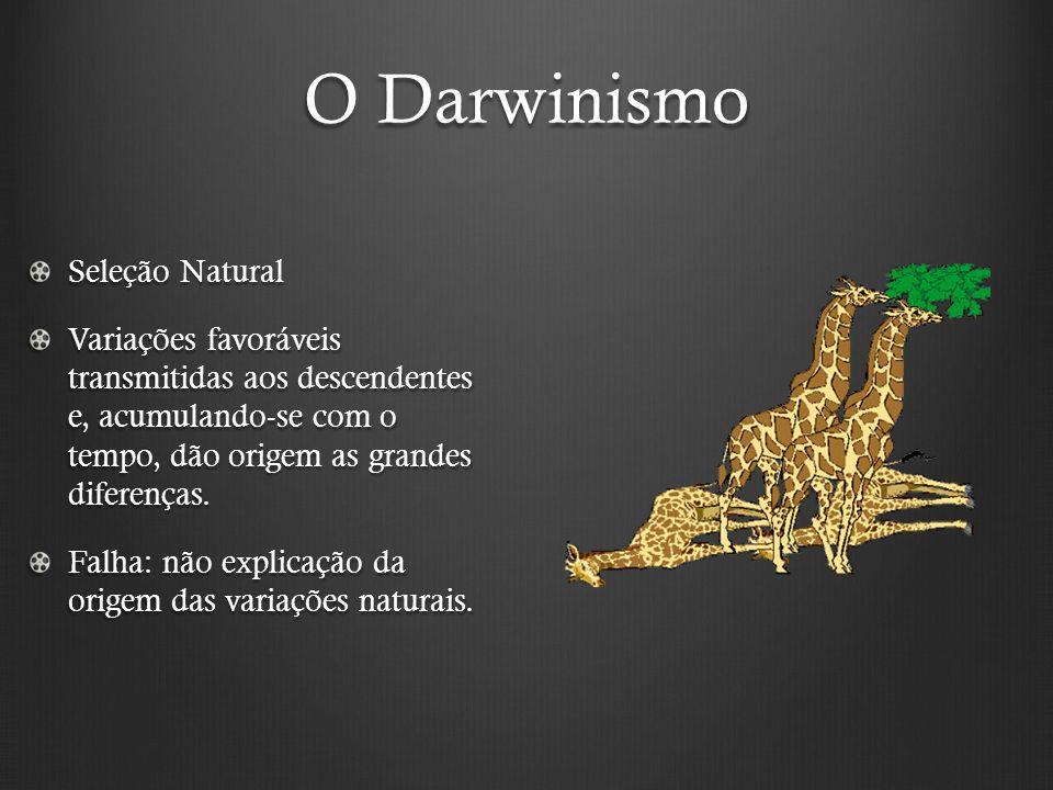O Darwinismo Seleção Natural