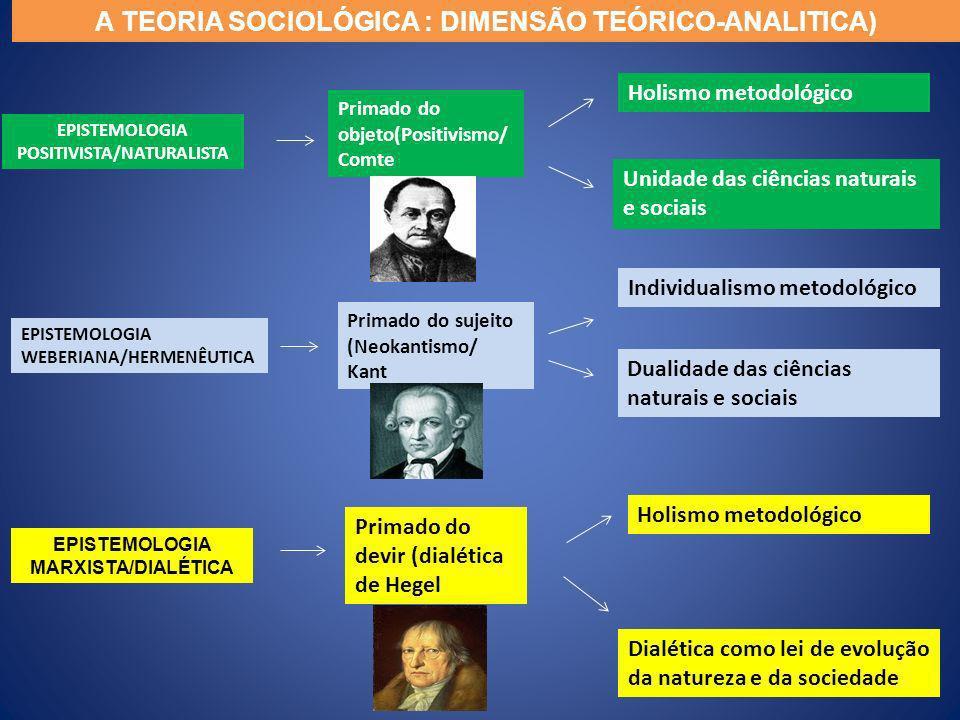 A TEORIA SOCIOLÓGICA : DIMENSÃO TEÓRICO-ANALITICA)