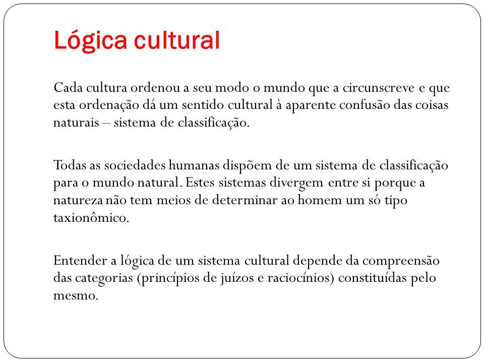 Lógica cultural