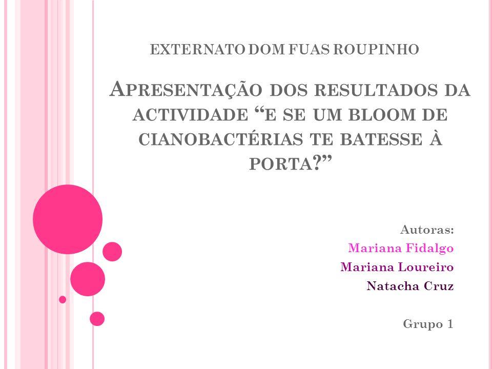 Autoras: Mariana Fidalgo Mariana Loureiro Natacha Cruz Grupo 1