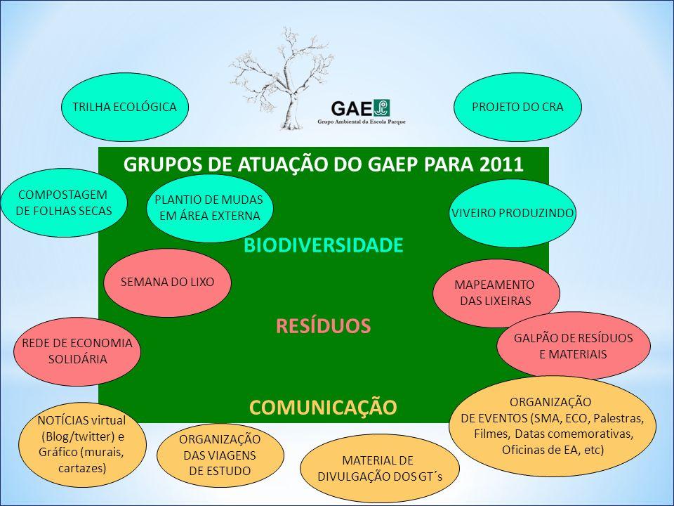 GRUPOS DE ATUAÇÃO DO GAEP PARA 2011