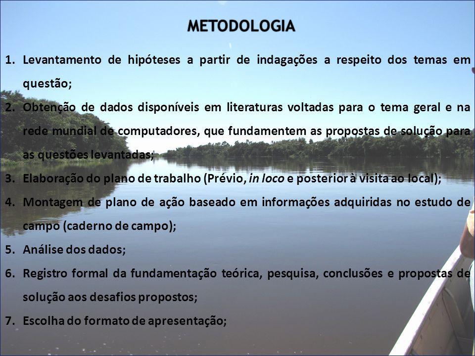 METODOLOGIA Levantamento de hipóteses a partir de indagações a respeito dos temas em questão;