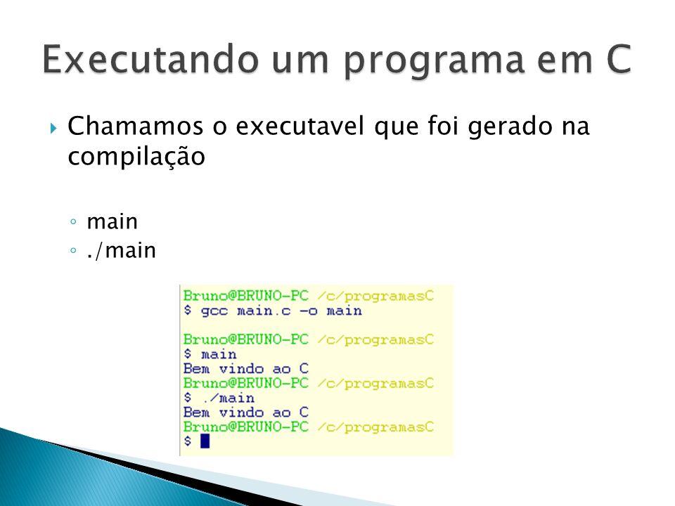 Executando um programa em C