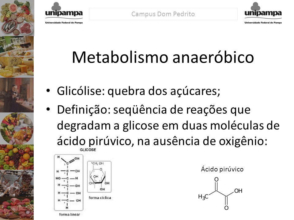 Metabolismo anaeróbico