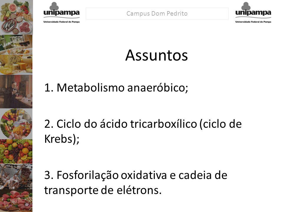 Assuntos 1. Metabolismo anaeróbico;